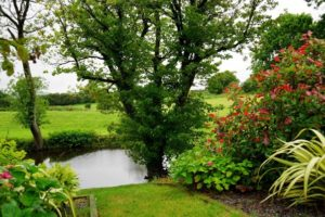 tips inrichten kleine tuin