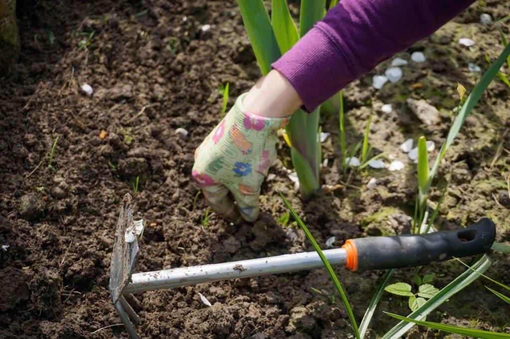Aan de slag in de tuin