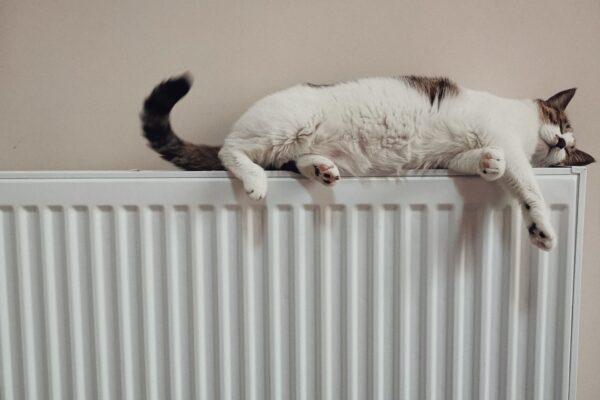 4 redenen waarom een handdoekradiator in huis zo fijn is